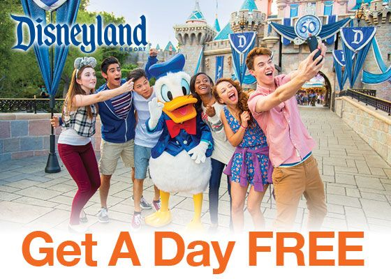 Best Disneyland Packages Ideas On Pinterest Disneyland - Disney family packages