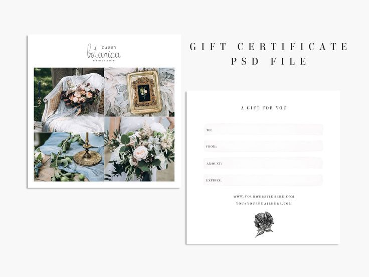 8 best Oak and May Creative Studio images on Pinterest - best of photographer gift certificate template