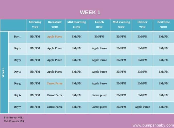 6 months week 1   – baby food