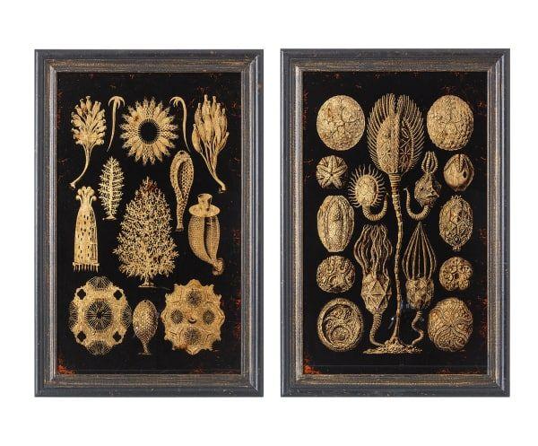 set de cuadros especies negro y dorado x cm
