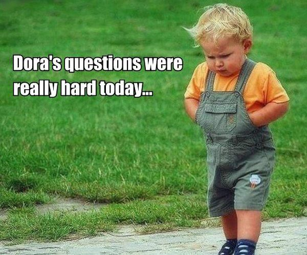 : Funny Pictures, Hilarious Pictures, Dora Questions, Funny Baby Pictures, Funny Stuff, Future Kids, Rough Day, Funny Kids, Dora The Exploring