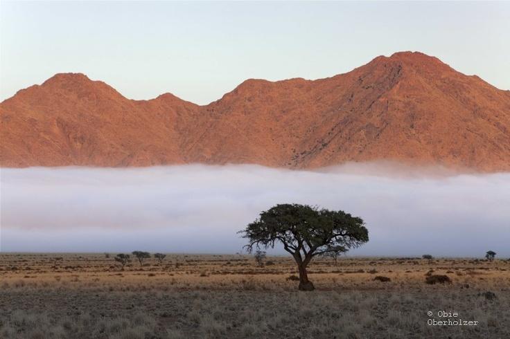 #Obie Oberholzer - Namibia