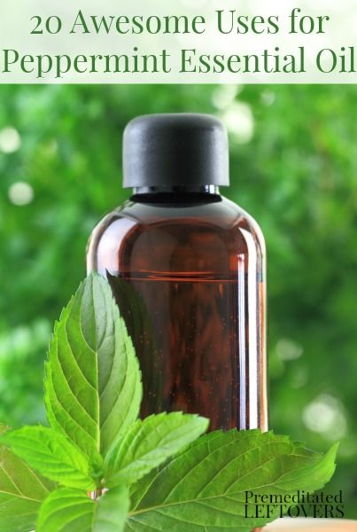 20 Awesome Uses for Peppermint Essential Oil. The uses for peppermint essential oil include natural health remedies and natural insect repellents.