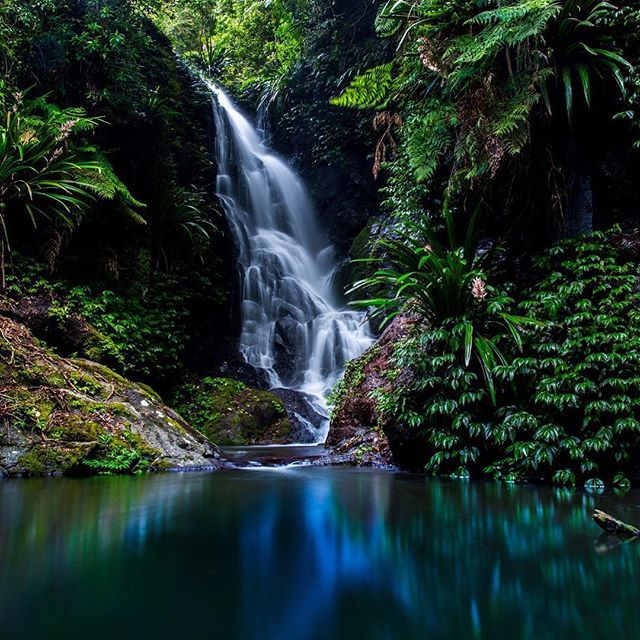 The gorgeous Elebana Falls in Lamington National Park #thisisqueensland by @brad_au