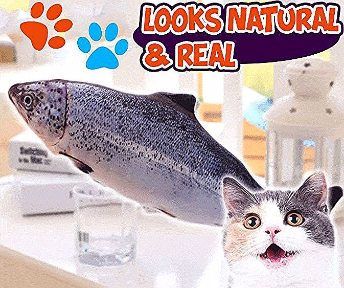 11 Fish Cat Creative 3d Plush Toy In 2020 Cat Toys Cats Kitten Toys