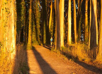 The best trail runs in and around town via @PureWow