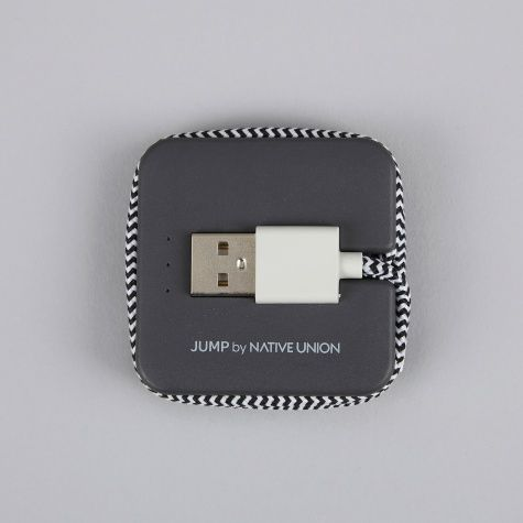 JUMP Cable 2-in-1 Cable & Portable Charger - Zebra