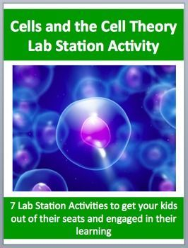 This FREE and fully editable Lab Station Activity on Cells and the Cell Theory is meant to get your students out of their seats and engaged in the content. Each station not only offers a unique opportunity to test your students knowledge (offer an opinion, answer questions based on a video or reading, draw, etc.), but also provides a fantastic learning opportunity where your kids are learning through assessment. Each station comes with a description card while some also contain more…