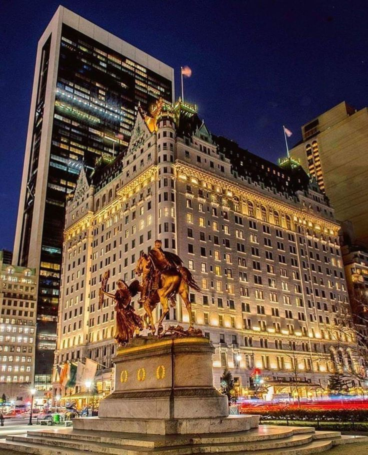 The great Plaza Hotel | New york city travel, New york travel, New ...
