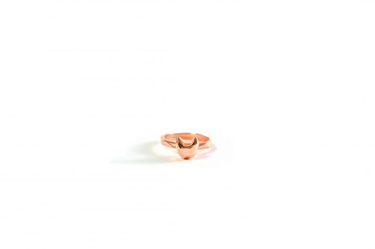 geometrik cat ring