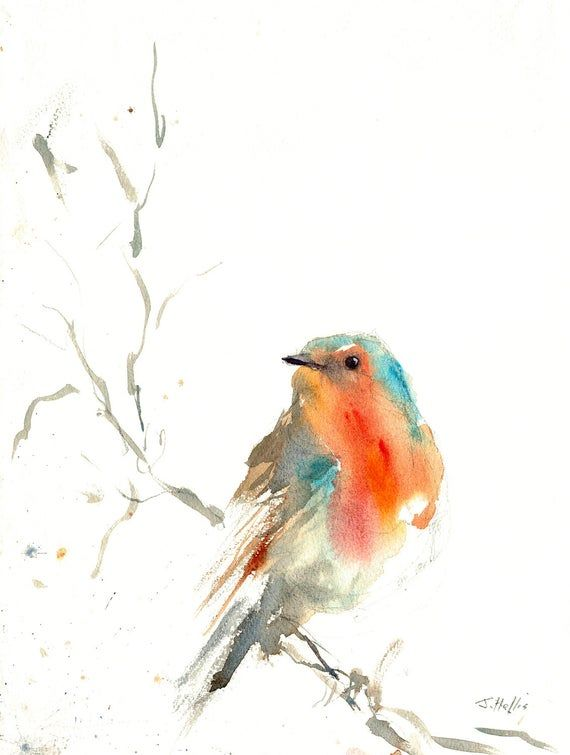 Pin on bird