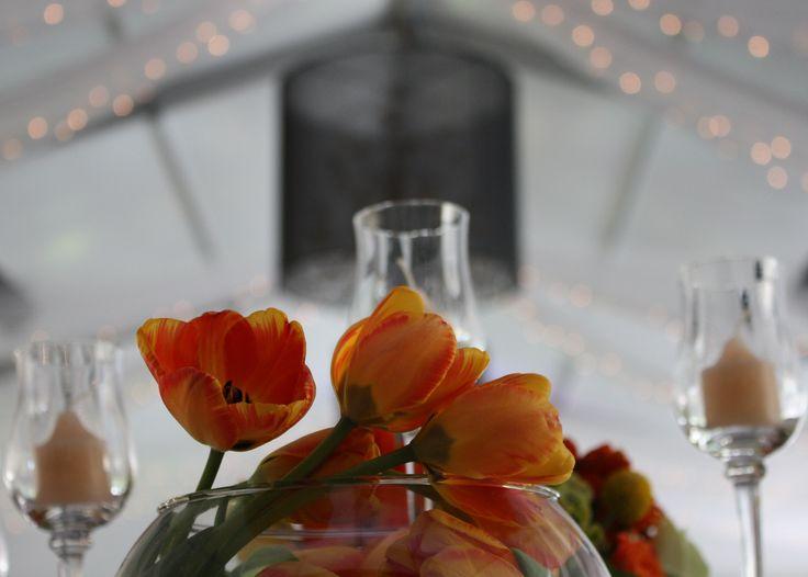 Des tulipes comme centre de table!