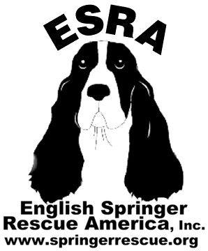 English Springer Rescue America Inc - GuideStar Profile