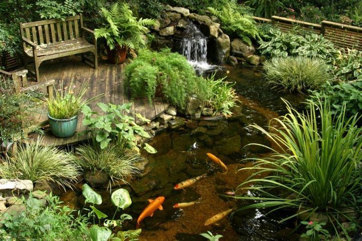 diseño de jardín con estanque koi
