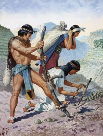 aztecs agriculture essay Aztec culture essay aztec culture essay  the high involvement of men in warfare resulted in handling of agriculture and small level horticulture by women, as .