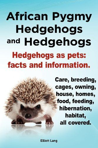 how to put a hedgehog on a diet