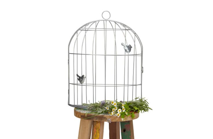 25 beste idee n over vogelkooi decoratie op pinterest vogelkooi decor vogelkooien en vogelkooi - Muur deco volwassen kamer ...