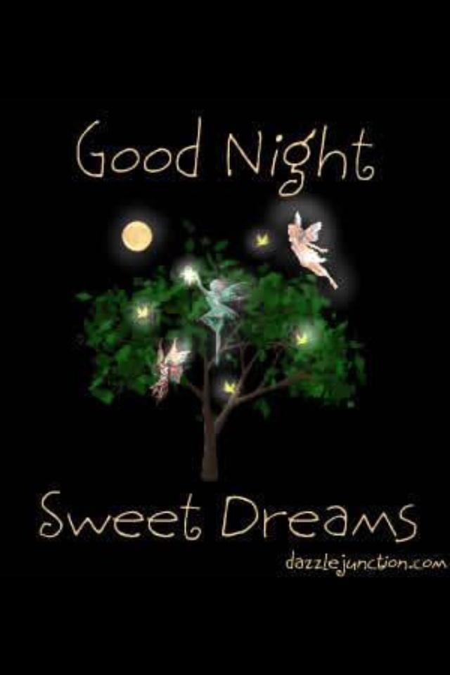 Good Night ~ Sweet Dreams...:)
