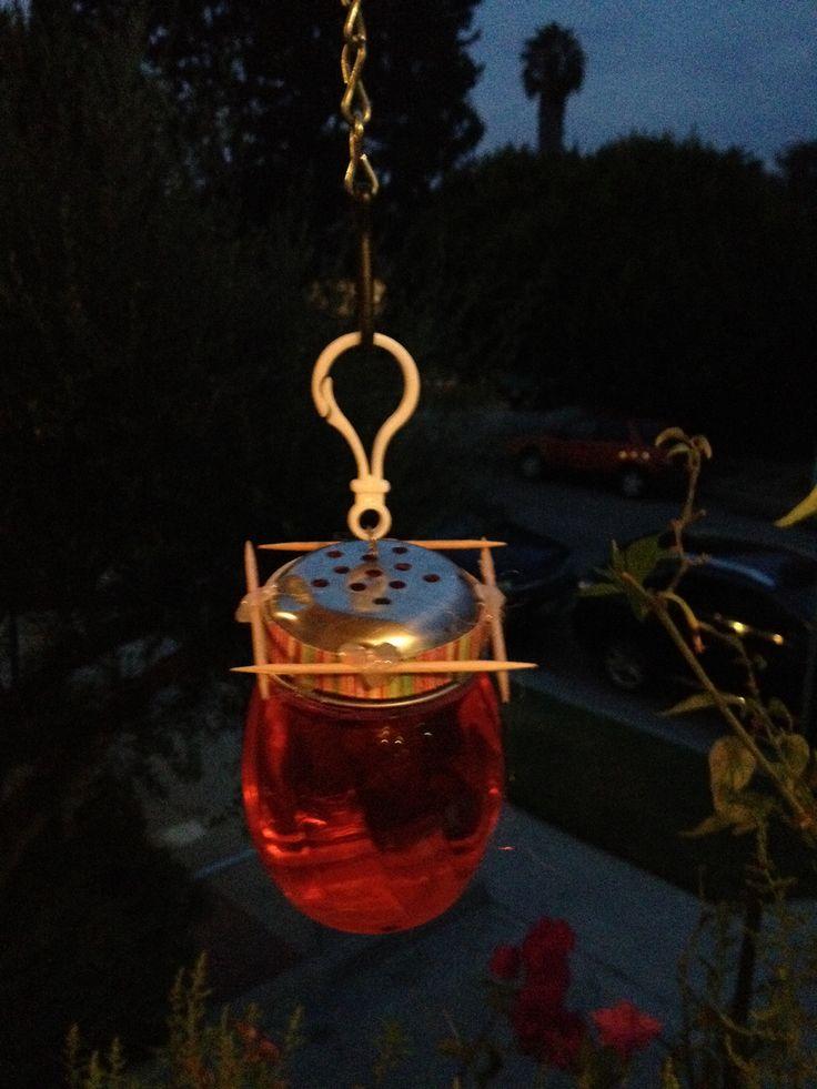 DIY humming bird feeder