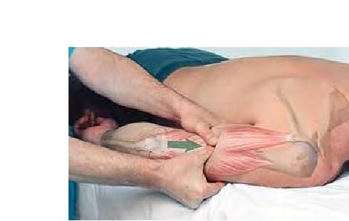 Basic Clinical Massage Therapy- Nice triceps work
