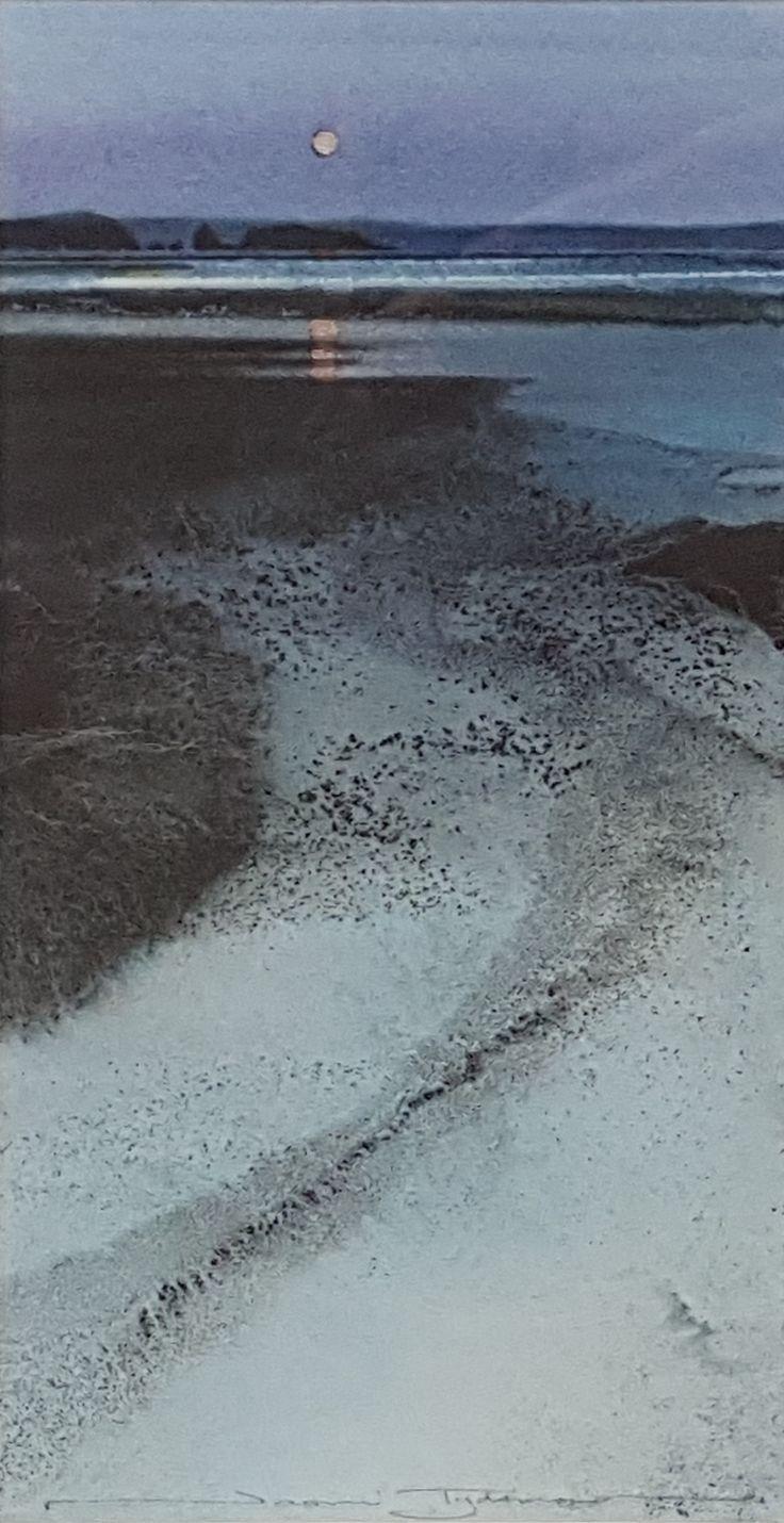 Naomi Tydeman - Moon over Monkstone Point