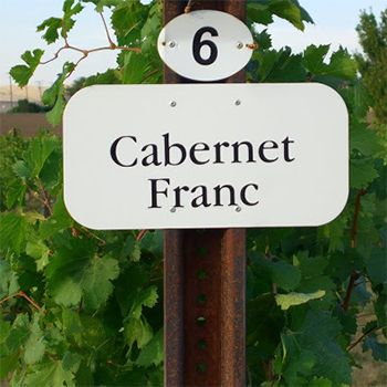 Top Wine Picks! A Franc Discussion - Jake Skakun recommends his favourite Canadian Cabernet Francs.