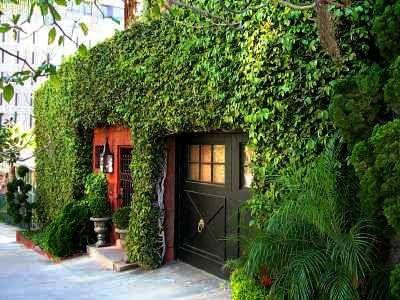 fachada con muro verde de plantas enredaderas