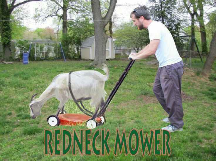 awesome Redneck Mower Just could not resist no insult intended... by http://dezdemon-humoraddiction.space/redneck-humor/redneck-mower-just-could-not-resist-no-insult-intended/