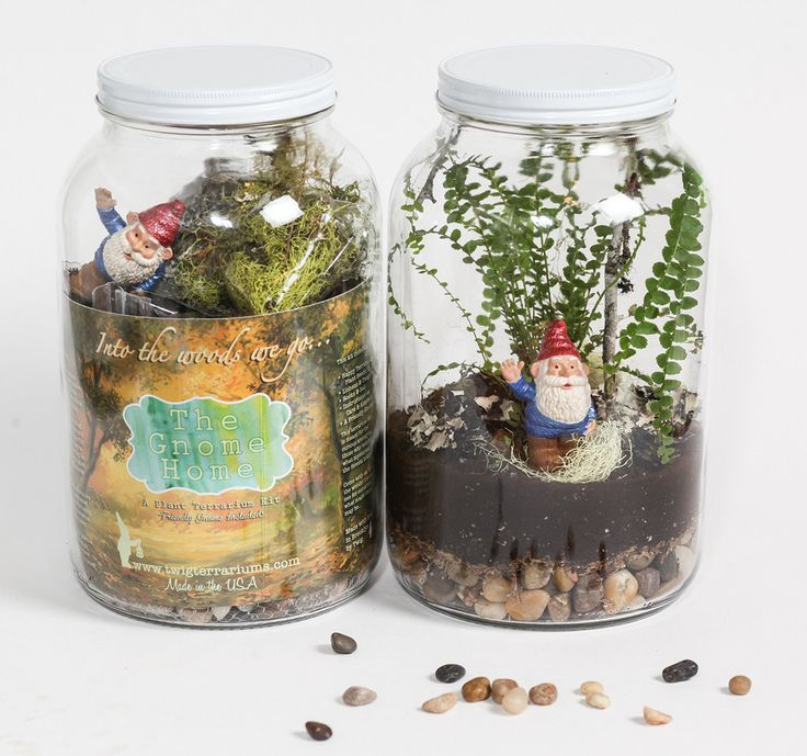 113 best closed container terrariums images on pinterest terrarium ideas mini gardens and plants. Black Bedroom Furniture Sets. Home Design Ideas