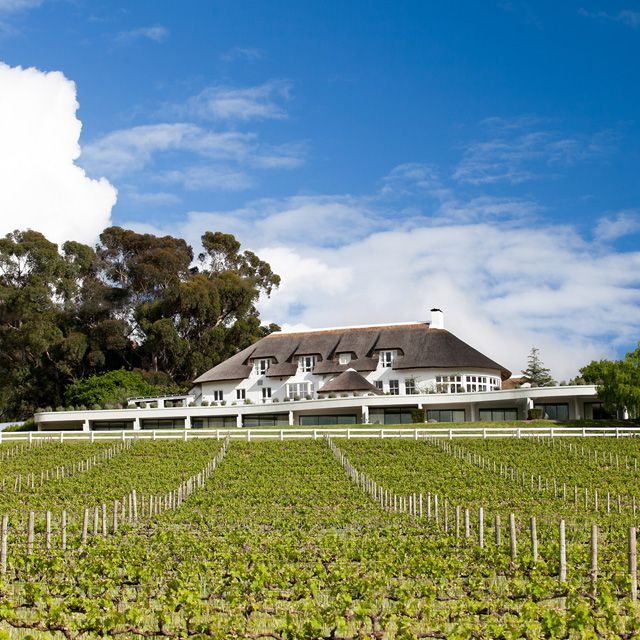 Mont Rochelle is a vineyard (and hotel) in Franschhoek. I visited in September 2016 and tried their Little Rock Blanc 2015 (Sauv Blanc, Chard, Semillon, Viognier), 2015 Sauvignon Blanc, 2015 Chardonnay, 2014 Little Rock Rouge (41% Cab Sauv, 41% Merlot, 9% Petit Verdot, 9% Mouvedre), 2009 Merlot, 2009 Cab Sauv, and 2009 Syrah.