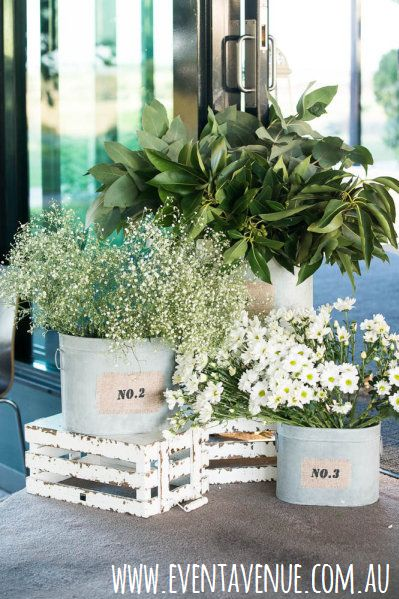 Plants and Flowers used in a vintage wedding, vintage wedding style