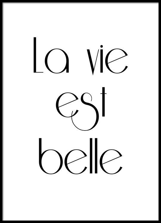 Plakat mit französischem Text, La vie est belle.