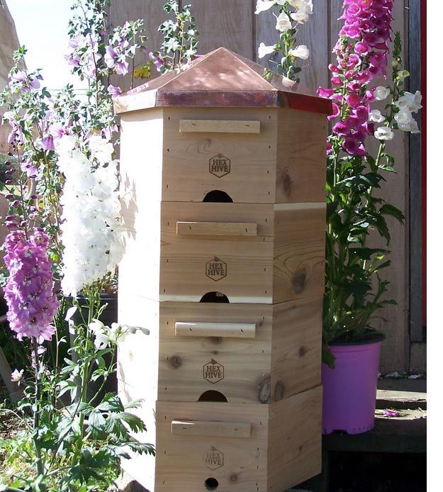 Hexa Beehive | Best Bee Hive Plans | Build a Hive & Help the Bees | Guide To Beginner Beekeeping by Pioneer Settler at http://pioneersettler.com/best-bee-hive-plans-build-a-hive-help-the-bees/