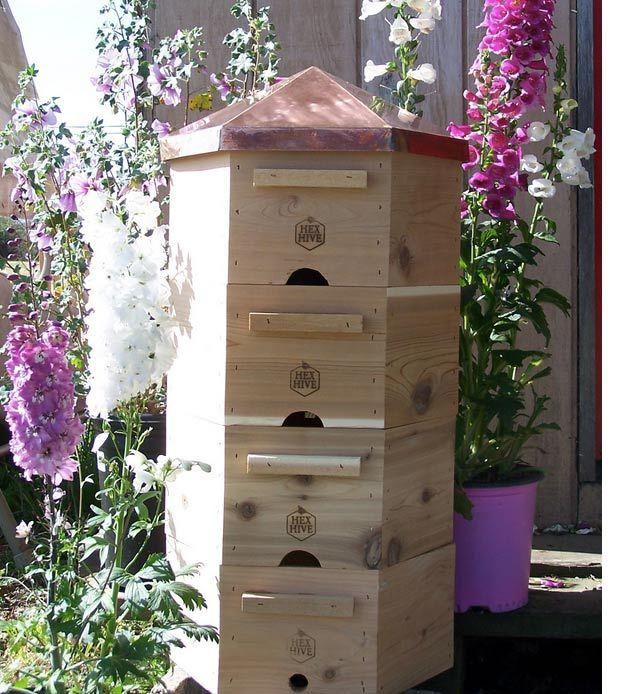 Hexa Beehive | Best Bee Hive Plans | Build a Hive & Help the Bees | Guide To Beginner Beekeeping by Pioneer Settler at http://pioneersettler.com/best-bee-hive-plans-build-a-hive-help-the-bees/