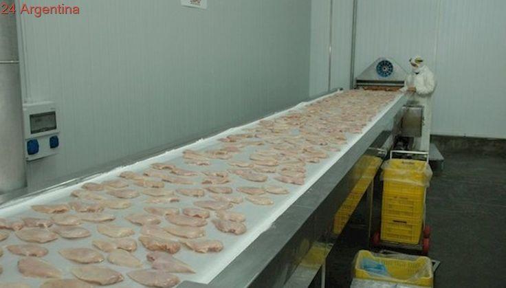 Nuevos mercados: Argentina comenzará a exportar carne aviar a Canadá