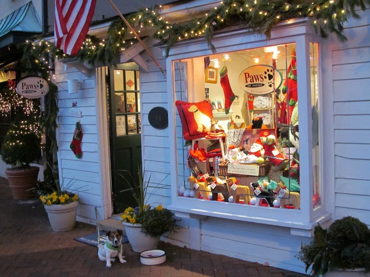 Awesome pet store display for the #holidays
