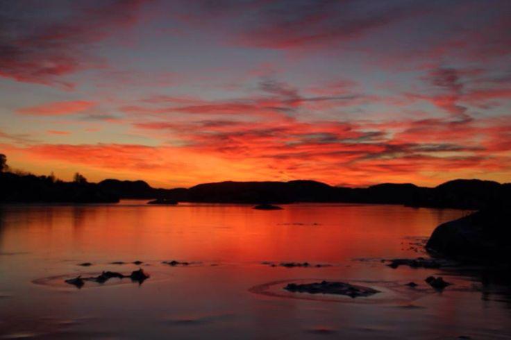 Nepa, Norway