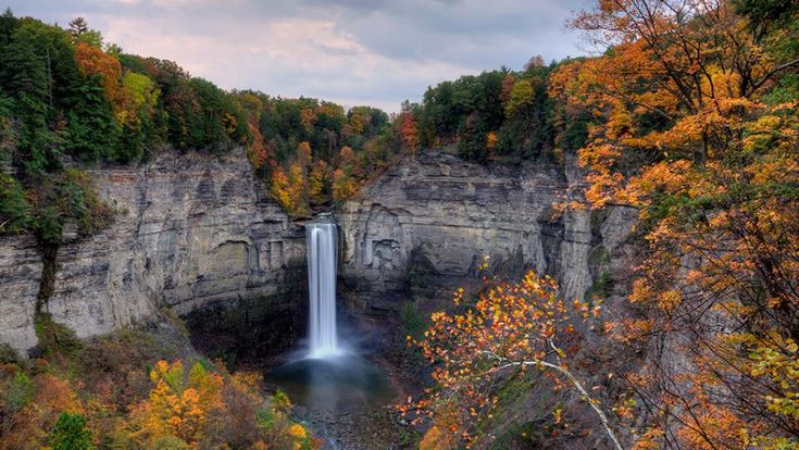 Taughannock Falls Ny Bed And Breakfast