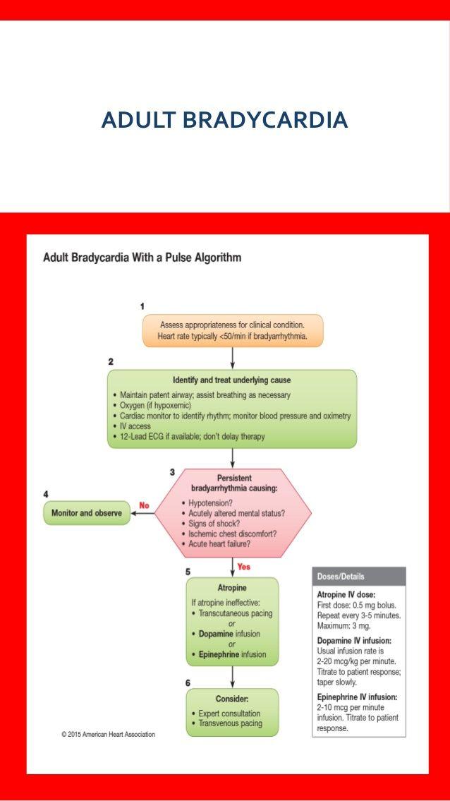 aha acls algorithms bls pals heart association american basic support algorithm cpr guides pediatric regard updating present cardiac nursing study