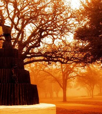 Texas A&M University - Bonfire statue