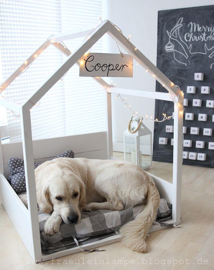 25+ beste ideeën over Adventskalender hund selber machen op Pinterest - dekoration küche selber machen
