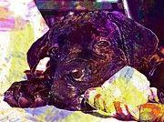 "New artwork for sale! - "" Dog Puppy Cane Corso Cute  by PixBreak Art "" - http://ift.tt/2tzi07O"