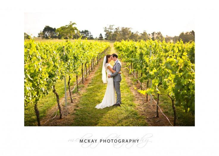 Chrissie & Brendan in the rows of grape vines at Bendooley Estate Berrima  #mckayphotography #bendooleyestate #bowralwedding #wedding #photography
