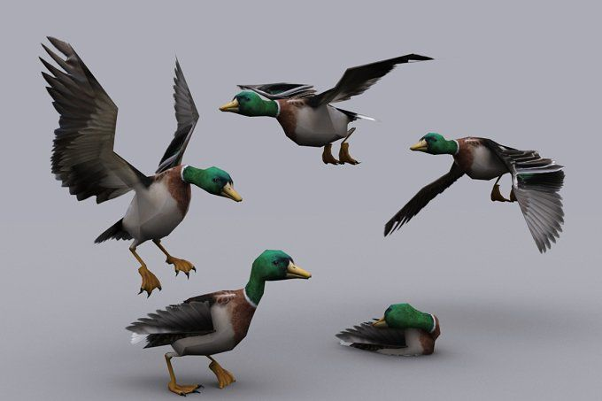 DUCK fbx only by PROTOFACTOR  on @creativemarket