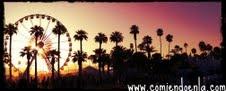Coachella Festival  Indio, California