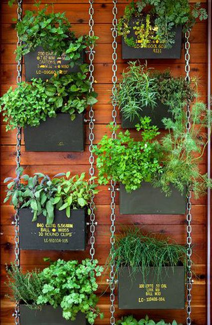 Vertical Gardening: Using chain to suspend planters.