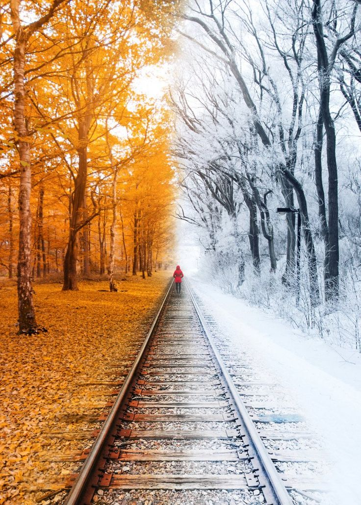 Winterfall Nature Poster Print metal posters in 2020