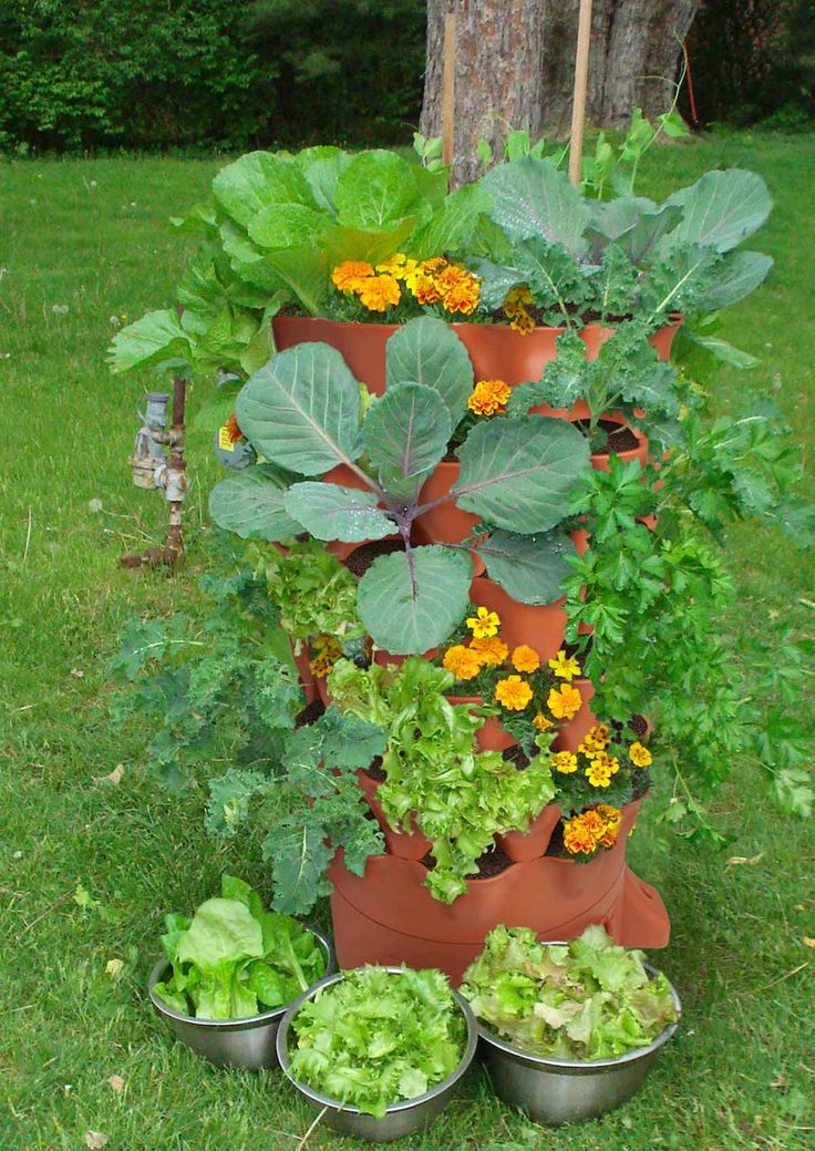 10 best Garden Tower User Photos! images on Pinterest | Container ...