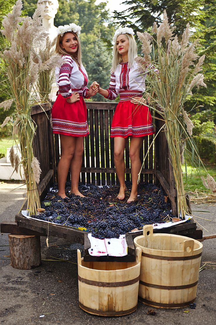 Winemaking - Harvest time, let's make some wine!
