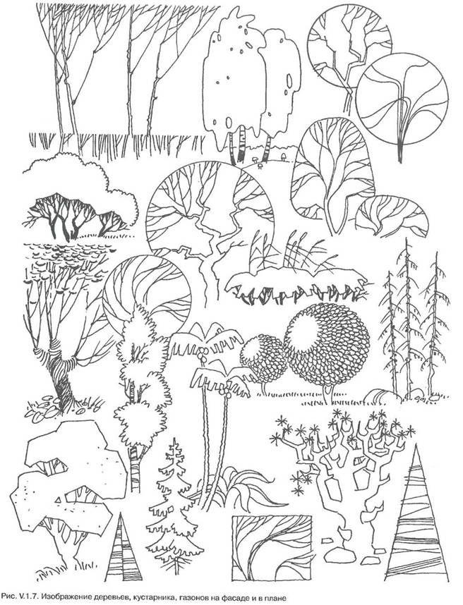 ландшафтный дизайн стилизация деревьев - Поиск в Google
